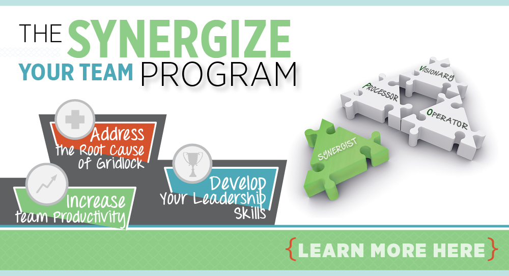 The_Synergize_Program_Banner
